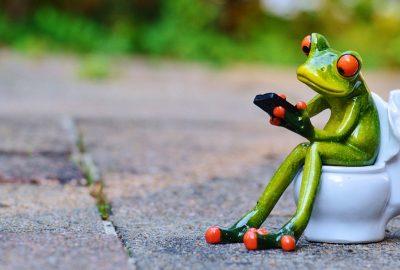 toilet frog