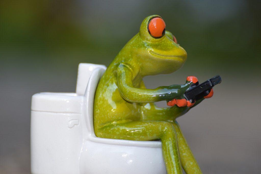 frog toilet 2
